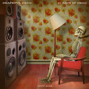 Grateful Dead 30 Days Dead