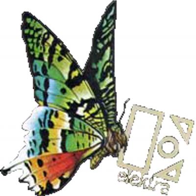 butterfly_1__400x400