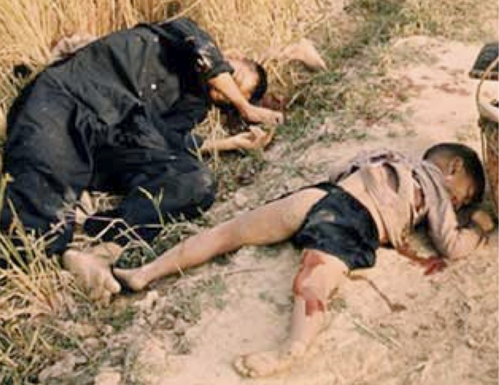 Image result for my lai massacre