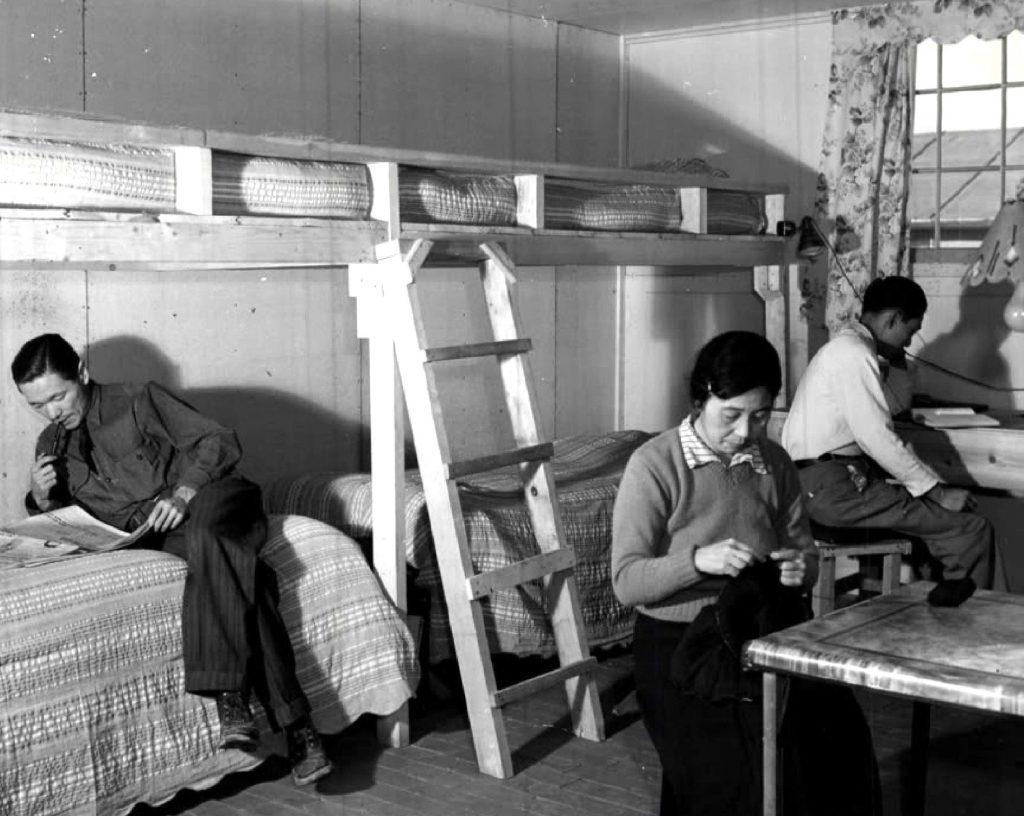 was japanese internment neessary essay